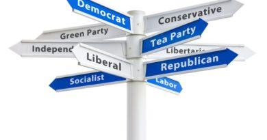 Про політичну франшизу